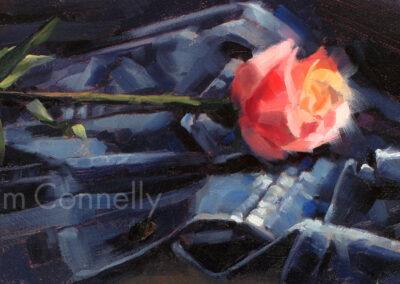 Denum Rose