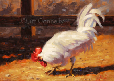 Chicken Scratch SOLD